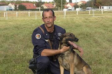 Pour les gendarmes, les chiens sont des partenaires incontournables