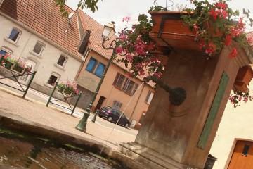 La « Entenbrunnen » Fontaine de Sarreinsming