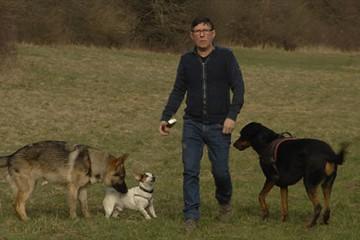 promenades canines éducatives proposées par Gwen & Paul