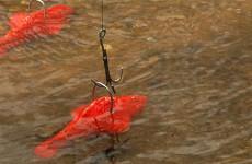 Les enfants ont pêché des poissons d'avril dans le ruisseau du jardin des faïenciers