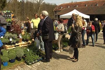 6ème édition du marché aux plantes et aux arts du jardin a battu le record de fréquentation au jardin des faïenciers6ème édition du marché aux plantes et aux arts du jardin a battu le record de fréquentation au jardin des faïenciers