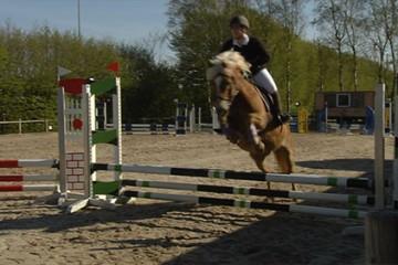 Le centre équestre Sarreguemines Jump n'a pas failli à la tradition en organisant un concours officiel de saut d'obstacles