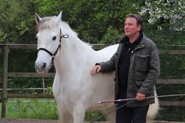 Jean-Adelin de comédien à dresseur de chevaux