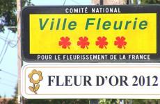 Sarreguemines espère conserver sa 4ème fleur