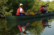 Descente de la Sarre en canoë avec le GECNaL pour observer la faune et la flore