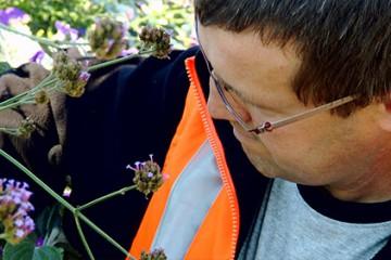 Raphaël Schaeffer est chargé du fleurissement à la ville de Sarralbe