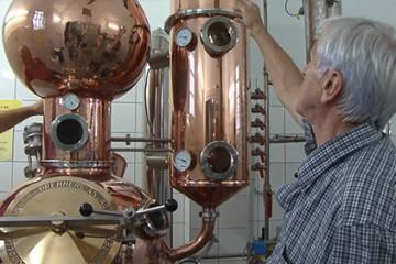 fin de saison pour la distillation du kirch à Seingbouse