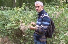 A la découverte des fruits sauvages avec Michel Greff