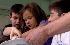 """Des écoliers ont appris à cuisiner avec ce que l'on considère souvent comme """"des déchets"""""""
