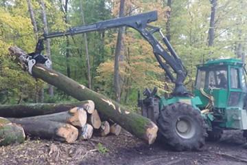 Avec son tracteur, le débardeur sort des grumes de plusieurs mètres cubes