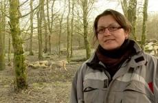 Mélodie Delmotte est soigneur animalier au parc de Sainte-Croix