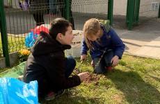 Opération plus d'arbres pour plus de vie : 21 arbres plantés par 21 élèves de l'école du Witz à Woustviller.