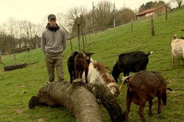 A Breidenbach, la ferme de l'Orchidée est une véritable arche de Noé