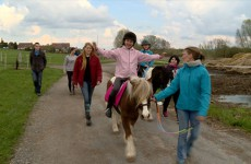 la rencontre des poneys