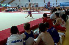 Des gymnastes de niveau international ont investi le gymnase Emilie Le Pennec lors de la Cup Sarreguemines