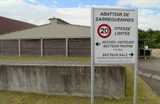 Le nouveau directeur de l'abattoir du Pays de Sarreguemines est sur le pont pour une reprise de l'activité en septembre