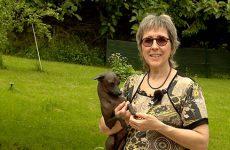 Estelle Anthoni-Koch possède des chiens étonnants, sans poil !