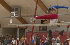 La revue d'effectif en gymnastique artistique masculine s'est déroulée ce week-end à Sarreguemines