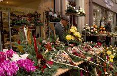 Les fleurs de la Toussaint, tout un commerce !