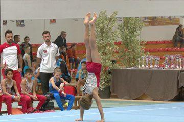 L'élite de la gymnastique masculine à Sarreguemines