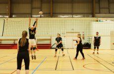 Le volley-ball loisir, c'est mixte et ça joue fort!