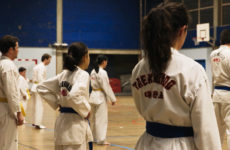 Dominique SICLARI, 10 ans d'entrainement au Taekwondo Sarreguemines.