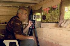 Partez sur les traces des animaux avec Marc Hen, passionné de photographie animalière depuis six ans.