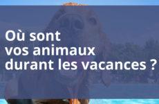 Où sont vos animaux pendant les vacances ?