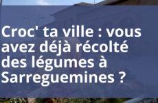 Croc' ta ville : Vous avez déjà récolté les légumes à Sarreguemines ?
